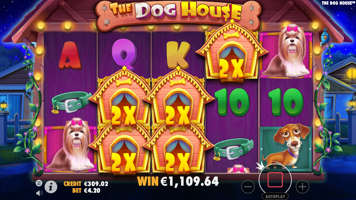 The Dog House Slot Bonus